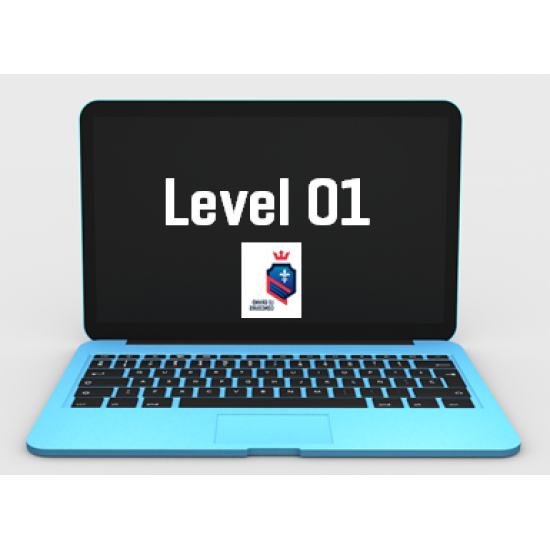 Level 01 Concours